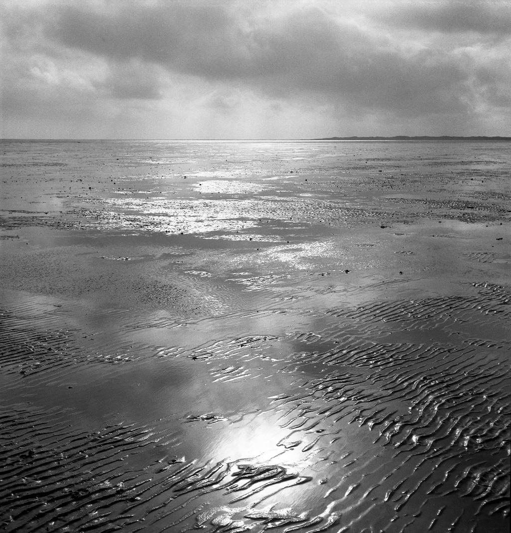 Tidal flat
